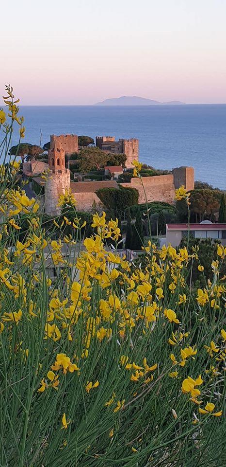 castello con fiori e mare